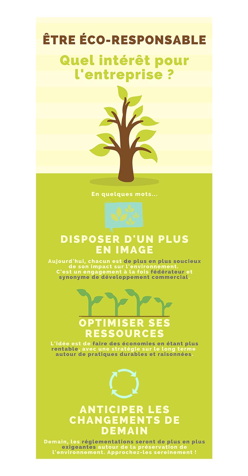 Infographie - entreprise éco-responsable (avec fond - V3)